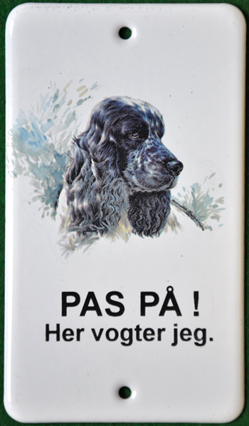 Cocker_spaniel_f_web