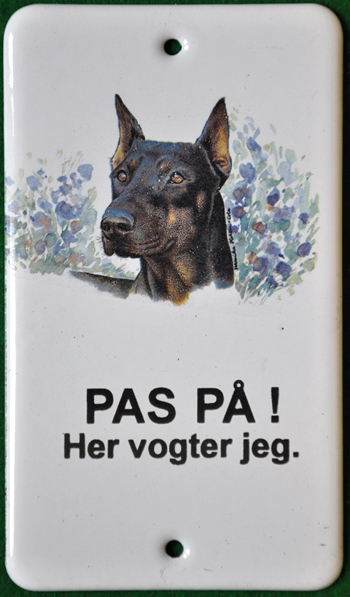 Dobermann_web