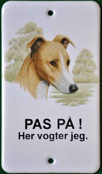 Greyhound_l1_web